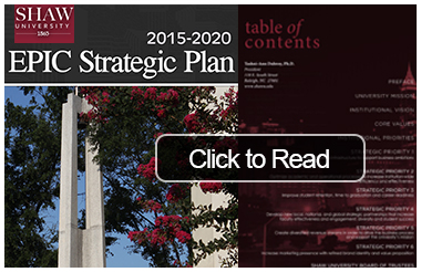 EPIC 2020 Strategic Plan