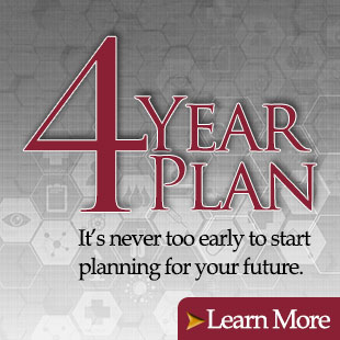4 Year Plan Image